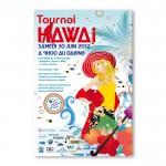 affiche dare hawai 2012