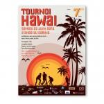 affiche dare hawai 2013